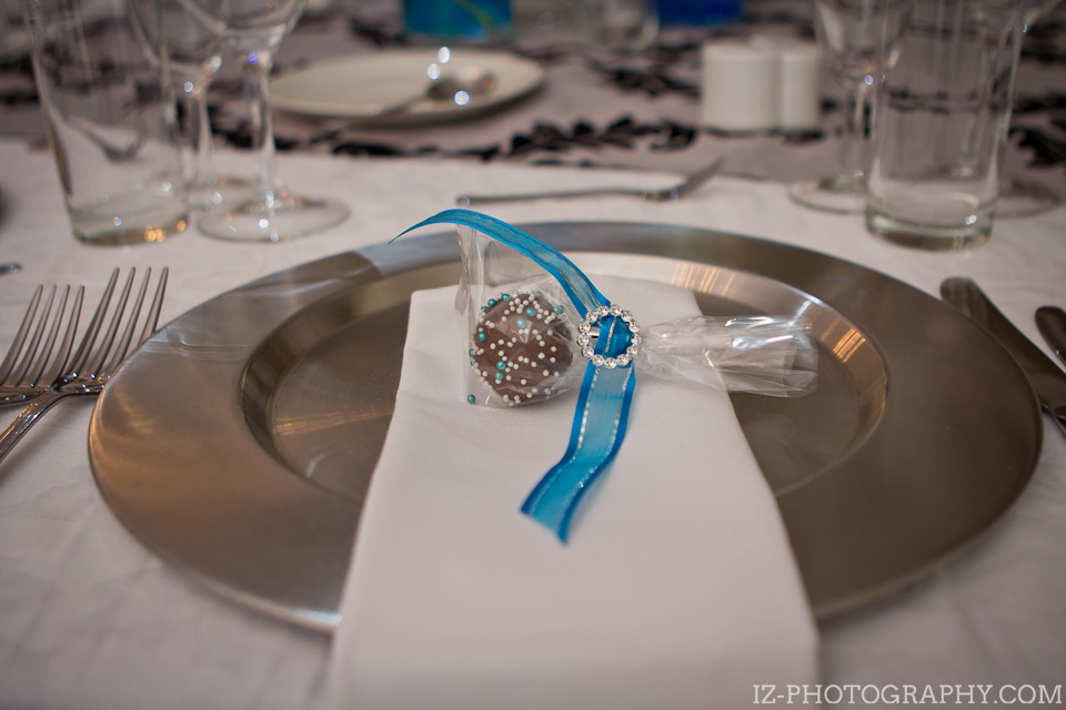 Three Rivers Vereeniging Vaal Triangle Wedding Izelle Labuschagne Photography (9)
