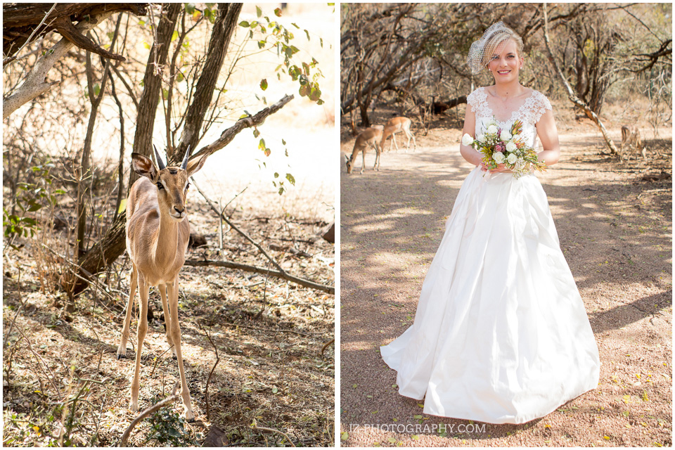 South African Wedding Photographer Izelle Labuschagne Kuthaba Bushveld Limpopo Modimolle (60)
